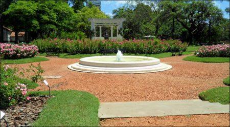 Palermo Rose Garden, Buenos Aires