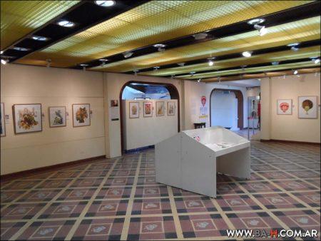 Colecciones en el Museo del Humor