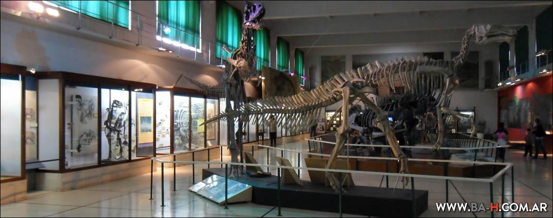 Qué hacer en Mayo en Buenos Aires: Museo de Ciencias Naturales